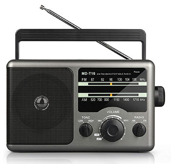 AM FM Portable Radio Transmitter (Greadio)
